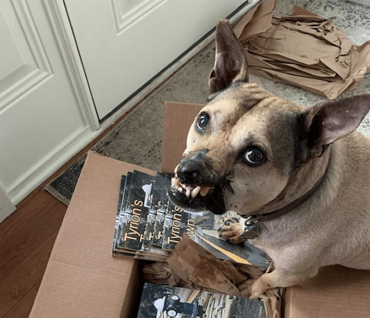 Tyrion Pittister, a dog fighting ring survivor, releases his second children's book
