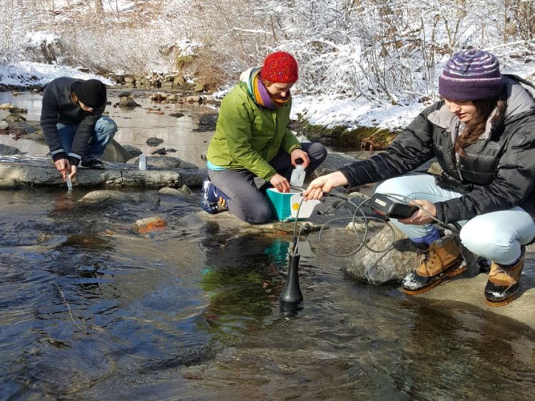 Meet UpstreamPgh: New name, same dedication to the Nine Mile Run watershed