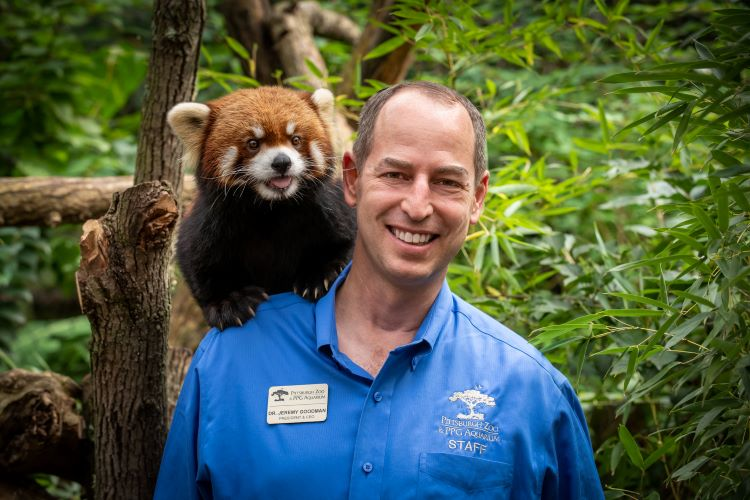 Pittsburgh Zoo & PPG Aquarium's new director grew up in a zoo of his own making